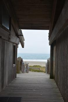 Drake's Beach: The Path
