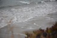 Drake's Beach: Making Waves