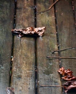 Soggy tables, Soggy leaves