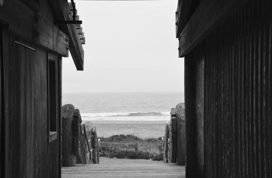 Drake's Beach: Dark Path