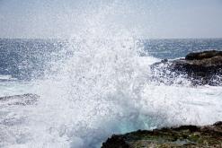 Point Lobos: The Crash